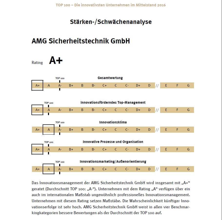 Stärken und Schwächen AMG-Sicherheitstechnik